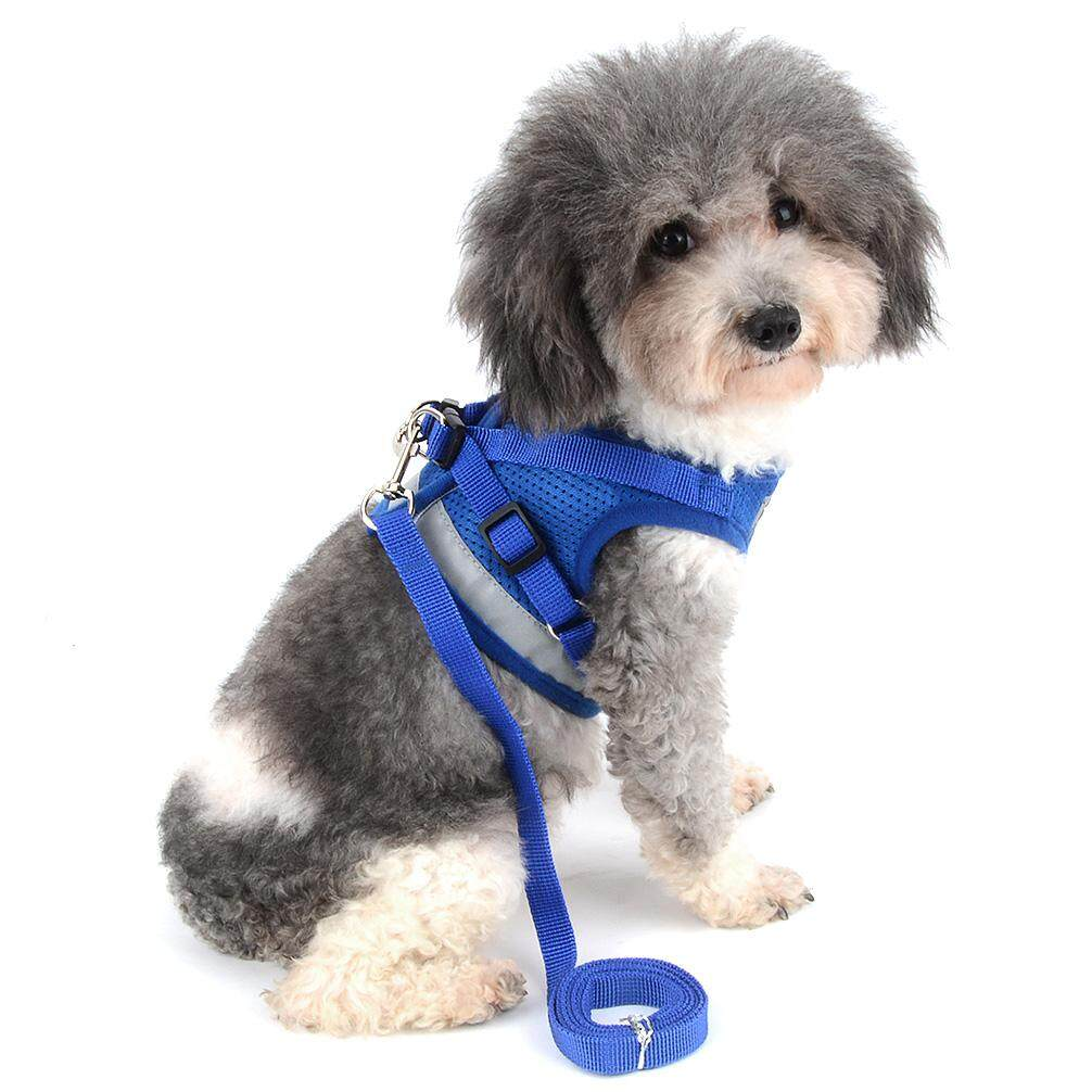 Selmai Small Pet Dog Cat Reflective Comfort Soft Mesh Vest Harness And Leash No Pull Adjustble Buckle Blue L - Intl By Selmai.