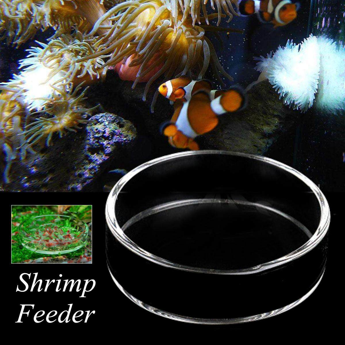 Aquarium Fish Tank Clear Acrylic Shrimp Feeding Food Dish Feeder Tray Glass Container  9cm - Intl By Audew.