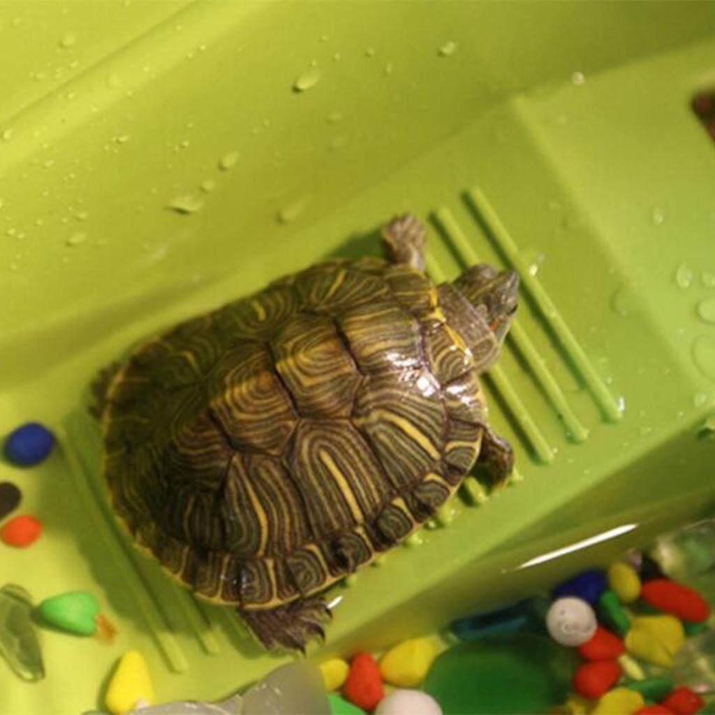 Fitur Bolehdeals Pet Reptile Turtle Frog Lizard Terrarium Basking Kaos Snake Ular Animal Tank Ramp Bank Dock 3