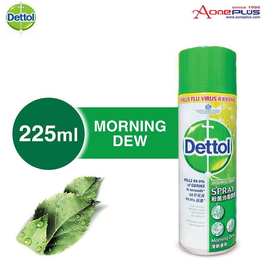 Dettol Antibacterial Germicidal Hygiene Liquid Disinfectant Spray Morning Dew 225ml