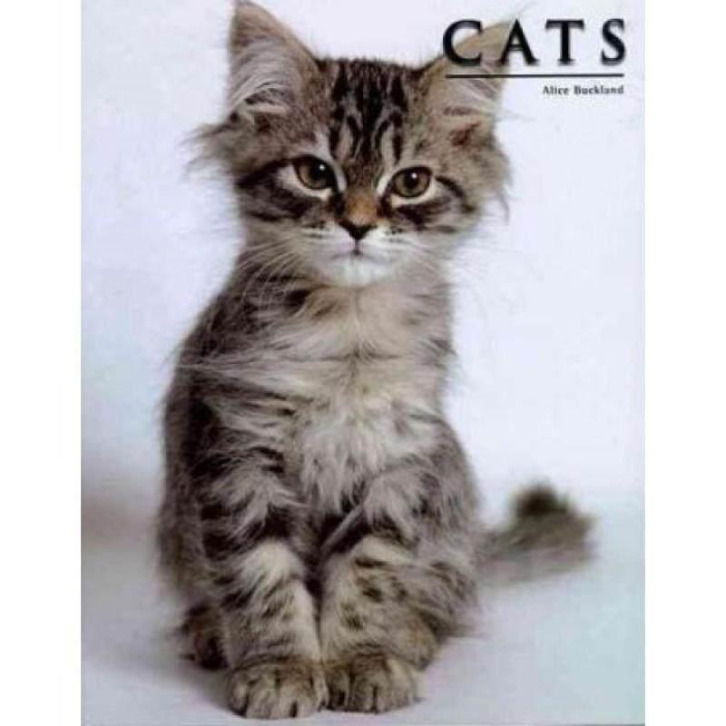 Cats 9781844061280 Malaysia
