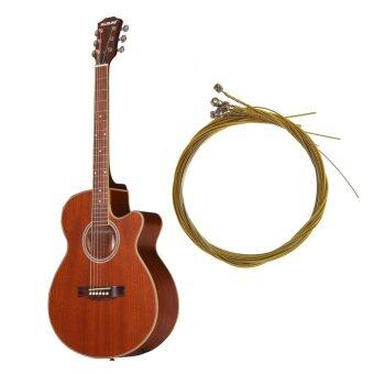 Harga Acoustic Guitar Strings