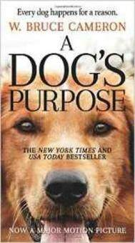 Harga A Dog's Purpose : A Novel for Humans