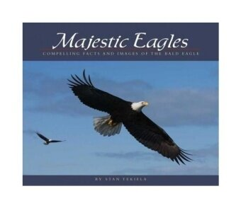 Majestic Eagles: Compelling Facts and Images of the Bald Eagle(Wildlife Appreciation)
