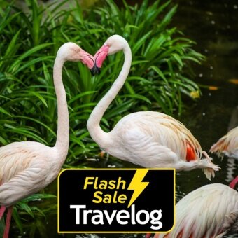 Langkawi: Wildlife Park Admission Ticket (Malaysian - Child)