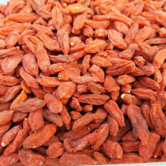Harga Fresh Bulk Goji Berries (500g)
