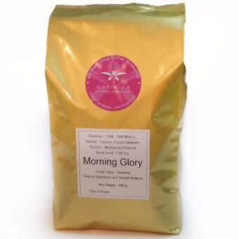 Harga 100% Arabica Coffee Beans Morning Glory Blend 500g with FREE SHIPPING