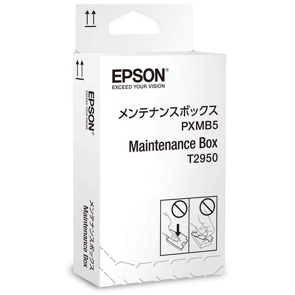 Epson WF-100 BK INK (PIGMENT) Maintenance Box (Item No: EPS T295000)