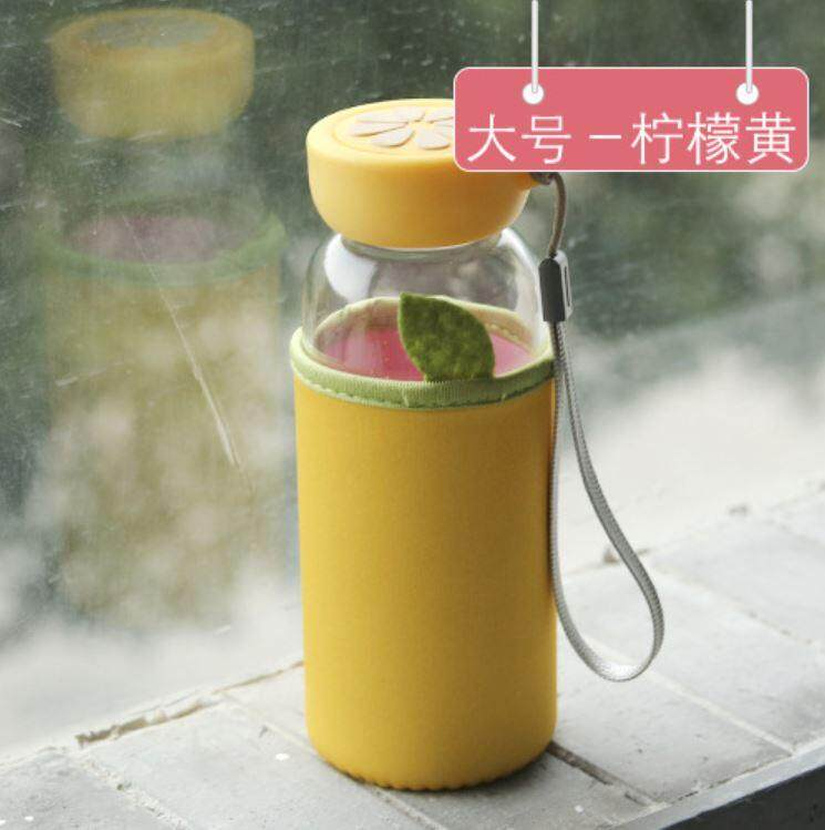 350 - 400 ml Glass Fruit Cloth Cover Water Bottle ACC-050