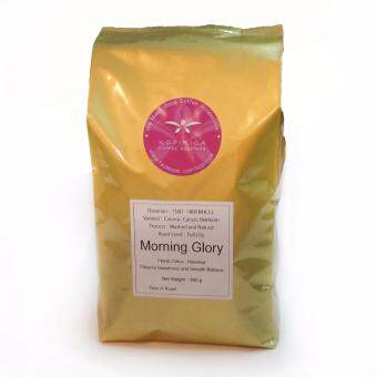 Harga 100% Arabica Coffee Beans Morning Glory Blend 500g with FREESHIPPING