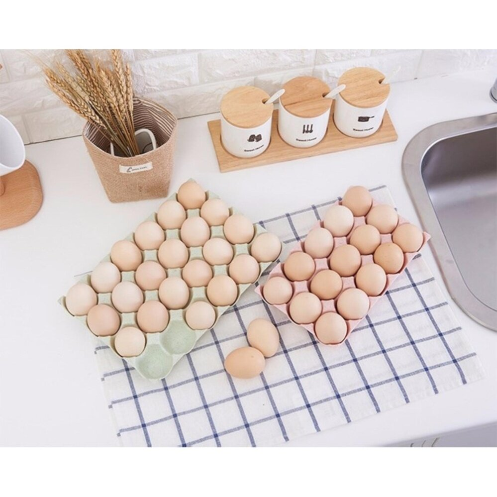 15 CELL PLASTIC EGG TRAY