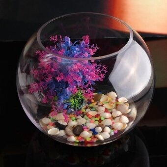 30cm Round Clear Glass Vase Fish Tank Ball Bowl Flower Planter