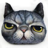 Animal Themed Throw Pillow - Cat Design D