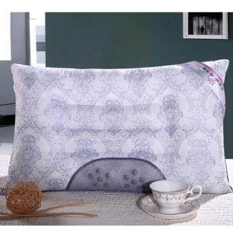 Buy 1 Free 1 - GTE Lavender Buckwheat Magnetic Health Pillow