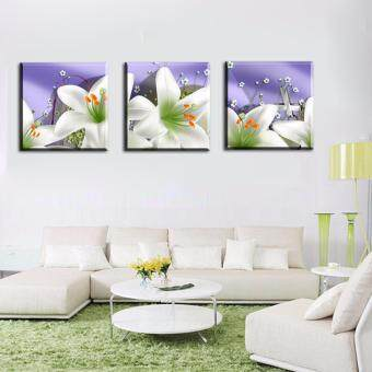 Cotyledon 3 Pannels 50*50cm No Frame lily Wall Art Picture Home Decoration Canvas Home