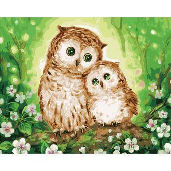DIY Oil Painting By Numbers Acrylic Two Owl Drawing On Canvas Home Office  Decor