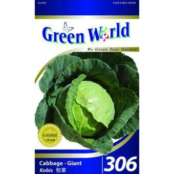 Green World Seeds GW-306 Cabbage-Giant (Kobis) 100 SEEDS