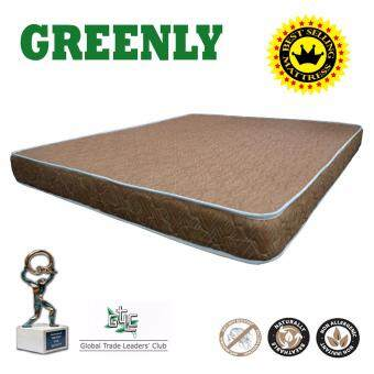 Harga GREENLY Queen Foam Mattress (5? Thickness) *Brown*
