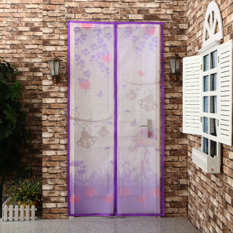 High-grade summer curtain mosquito magnetic encryption soft screendoor curtain bedroom off the anti-fly screens Salmonella - 2