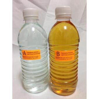 Harga Hydroponics Nutrient Concentrate A+B (Leaf Grow)