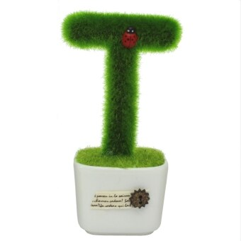 Harga Home Decorative Customized Alphabet - T Hedge In The Pot