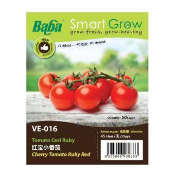 Harga Baba Smart Grow Seeds VE-016 Hybrid Cherry Tomato Ruby Red (Tomato Ceri Rubi) 50SEEDS