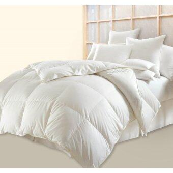 Harga Jean Perry Pluffy Down Quilt- Queen