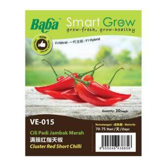 Harga Baba Smart Grow Seeds VE-015 Hybrid Cluster Red Short Chilli (Cili Padi Jambak Merah) 30SEEDS