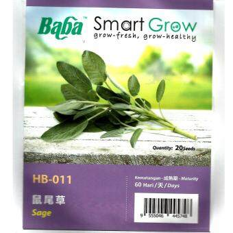 Harga BABA SMART GROW HB-011 Sage 20seeds