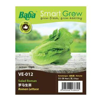 Harga Baba Smart Grow Seeds VE-012 Roman Lettuce (Salad Roman) ±3G