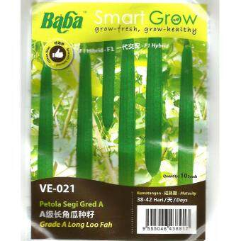 Harga Baba Smart Grow Seeds VE-021 Hybrid Long Loo Fah (Petola Segi) 10SEEDS