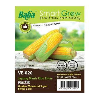 Harga Baba Smart Grow Seeds VE-020 Hybrid Golden Thousand Super Sweet Corn (Jagung Manis Ribu Emas) ±5G