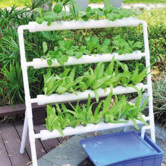 Harga Hydroponic Site Grow Kit Deep Water Culture Garden System Set (36 Site)
