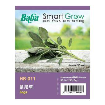 Harga Baba Smart Grow Seeds HB-011 Sage 20SEEDS