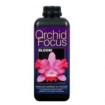 Harga Growth Technology Orchid Focus Bloom 1L (Orchid Bloom Fertilizer)