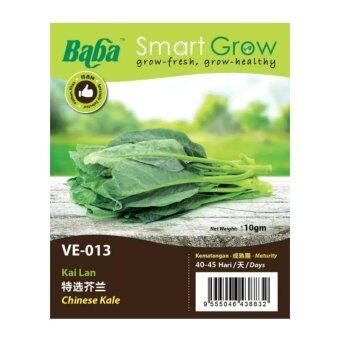 Harga Baba Smart Grow Seeds VE-013 Chinese Kale (Kai Lan) ±10G