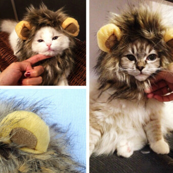 Harga PET pet Costume Lion Mane Wig Hat for dog Cat CAT Halloween