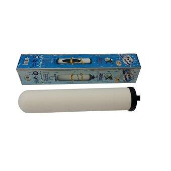 Harga British Portacel Ceramic Candle Filter (short head)
