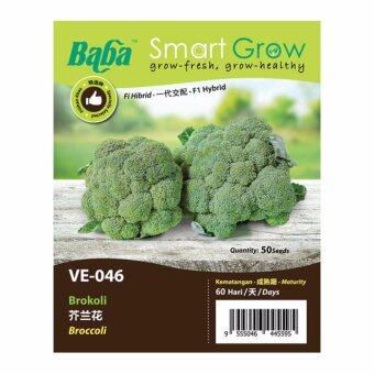 Harga Baba Smart Grow Seeds VE-046 Broccoli (Brokoli) 50SEEDS
