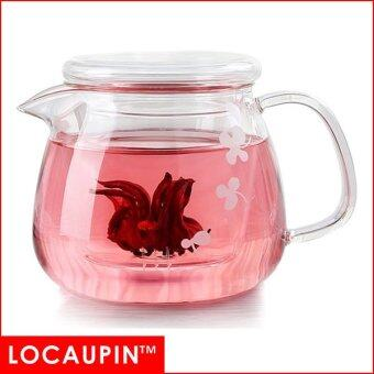 Harga LOCAUPIN Glass Teapot Heat-proof (500ml)