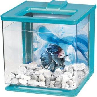 Harga Marina Betta EZ Care Aquarium Kit - Blue - 2.5 L (0.7 US Gal)