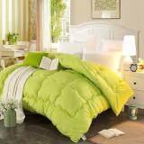 Maylee Colourful Soft Microfiber Duvet Queen (Green)