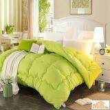 Maylee Colourful Soft Microfiber Duvet Single (Green)