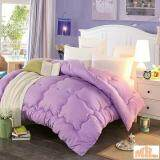 Maylee Colourful Soft Microfiber Duvet Single (Purple)