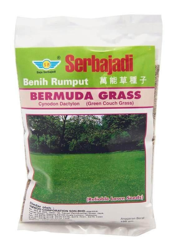 Serbajadi Bermuda Grass (200gm) (approx. 170sq ft)