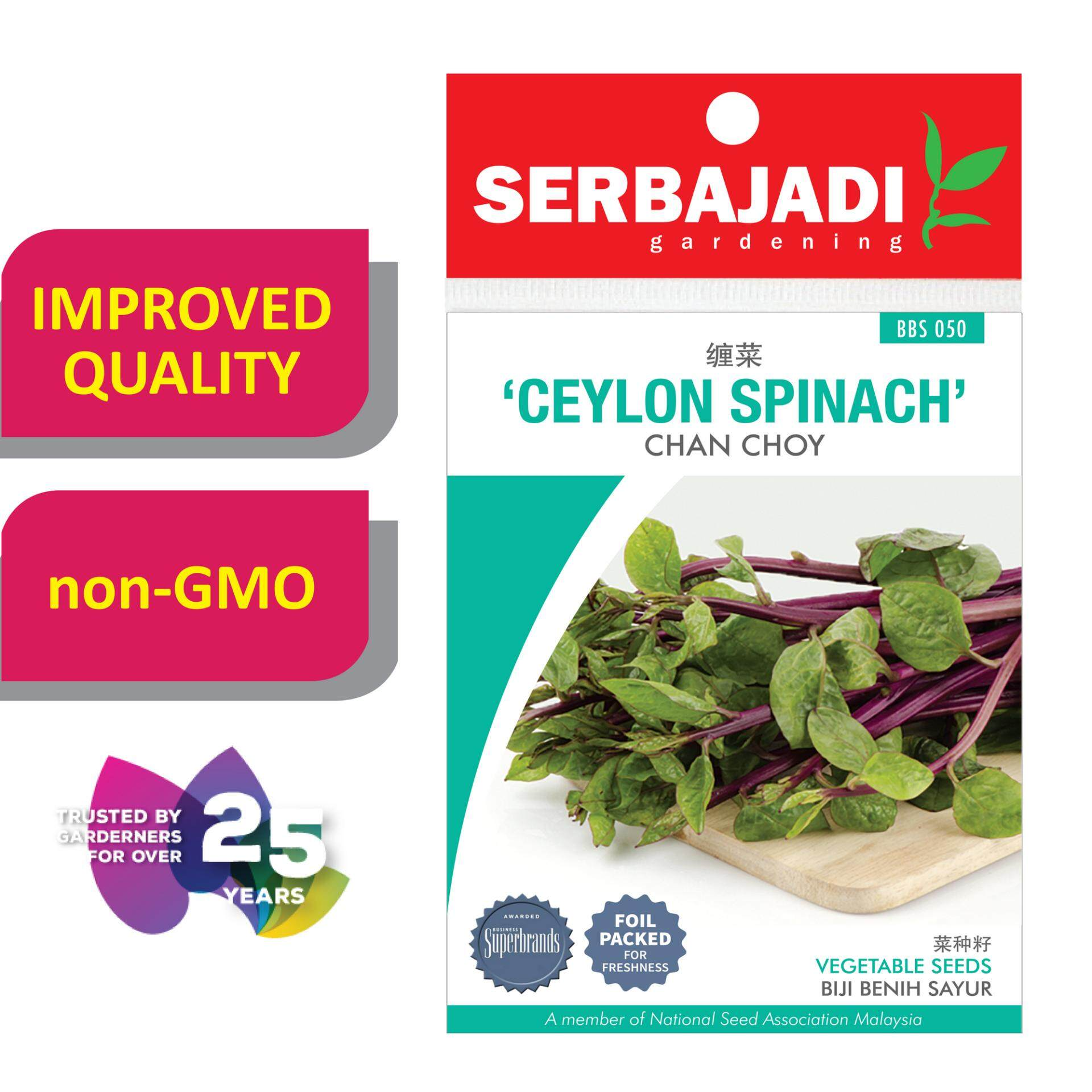 Serbajadi seeds/ benih Ceylon Spinach - Chan Choy ( BBS050 )