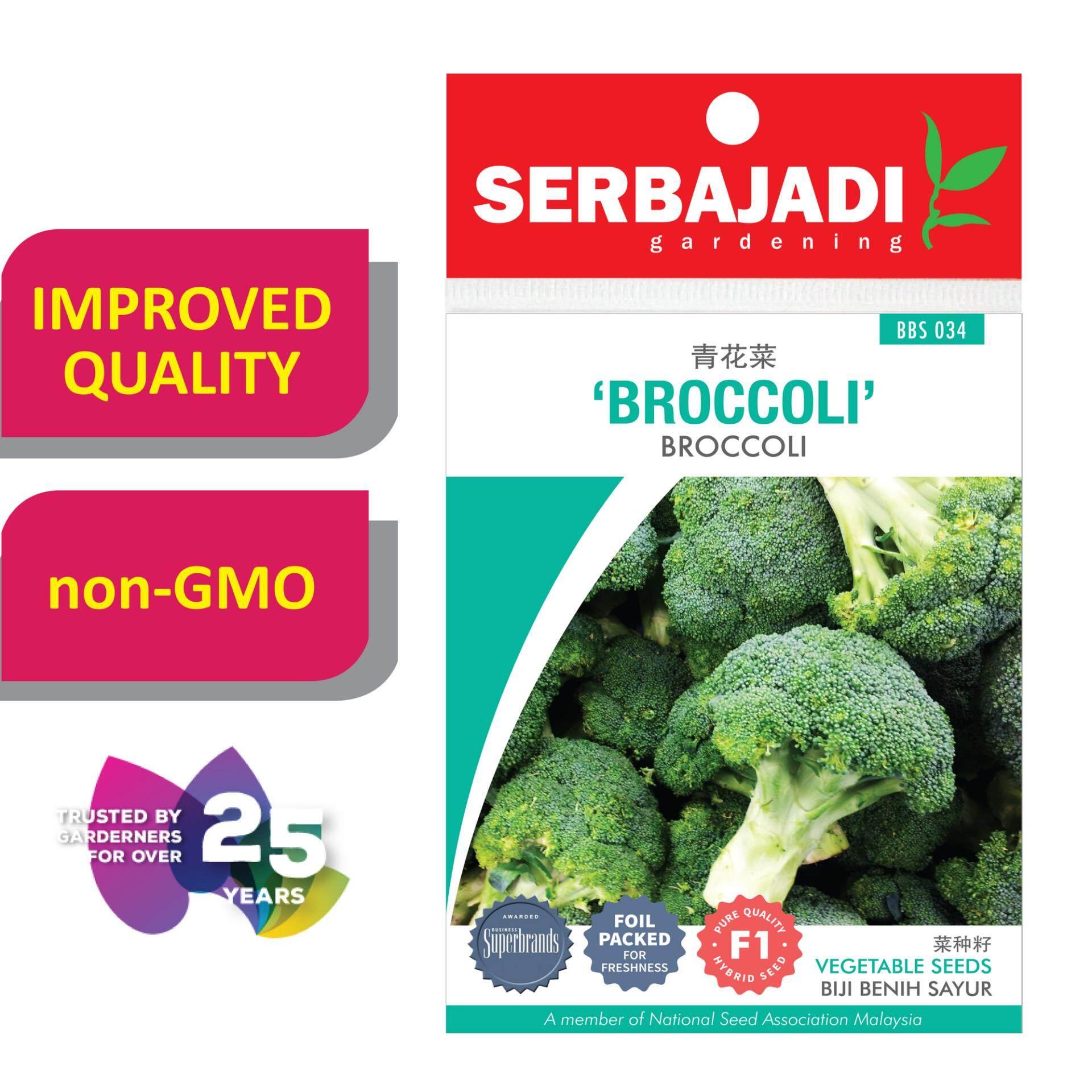 Serbajadi Seeds F1 Hybrid Broccoli ( BBS034 )