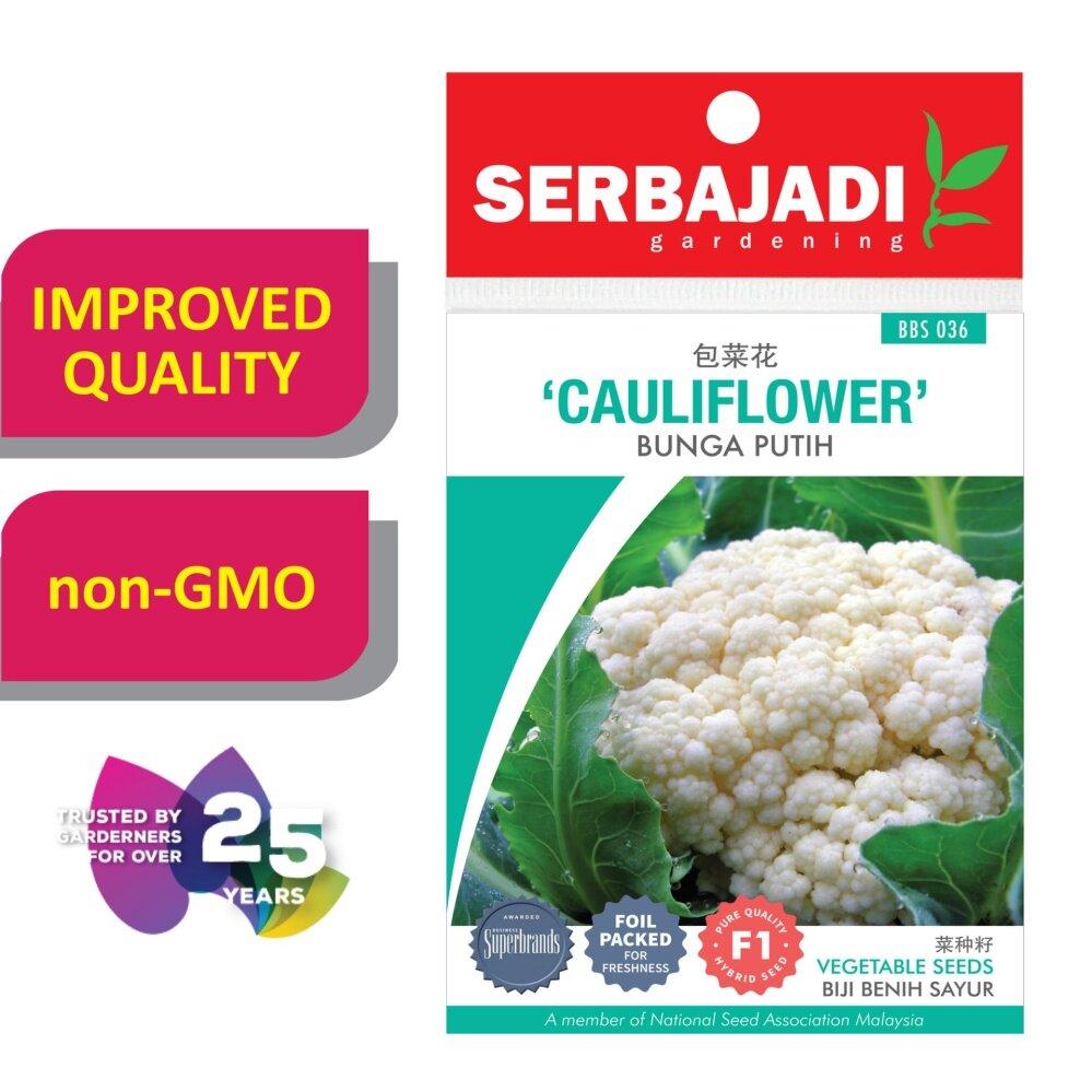 Serbajadi Seeds F1 Hybrid Cauliflower ( BBS036 )