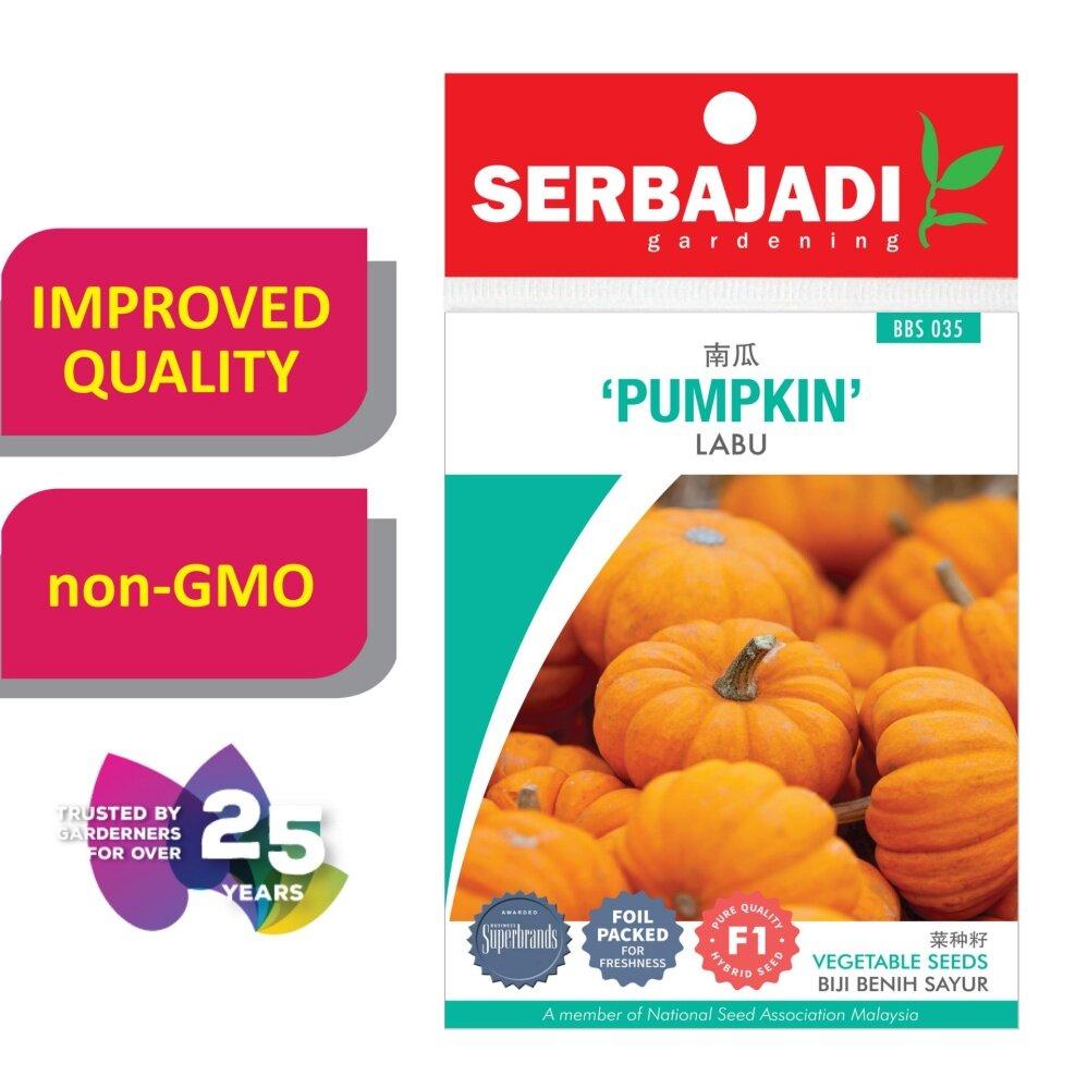 Serbajadi Seeds F1 hybrid Pumpkin - Labu ( BBS035 )