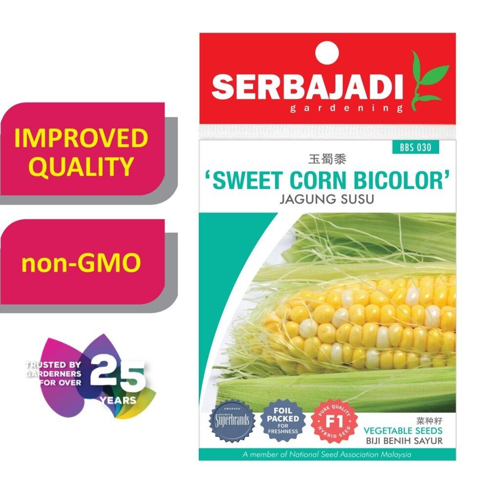 Serbajadi Seeds F1 Hybrid Sweet Corn Bicolor - Jagung ( BBS030 )